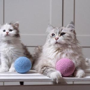 Duża piłka dla kota z kocimiętką