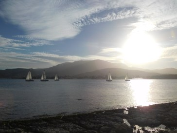 sail boats in front of mount wellington