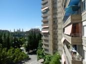 229 vistas Al Pilar