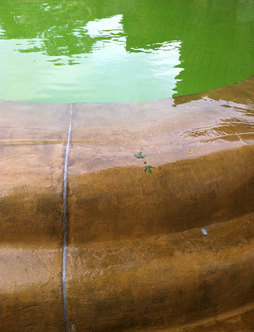 Pool, 2013
