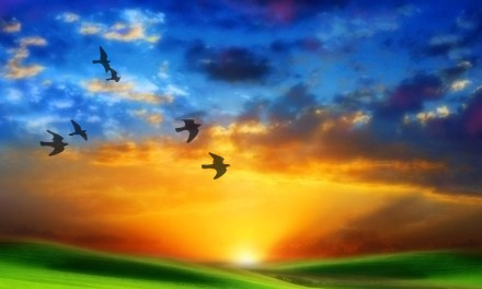 Paseo de Vicente y Luisa en el cielo