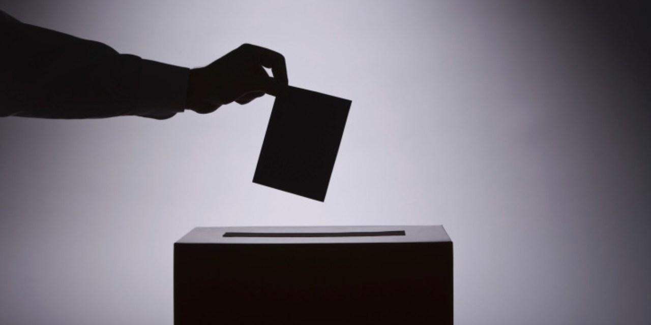 La Familia vicenciana, ante las elecciones generales de cualquier país (5ª y última parte)