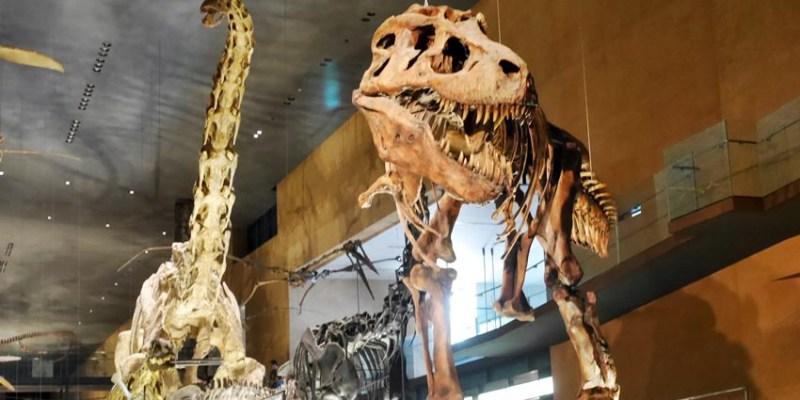 福岡景點|北九州市立自然史·歷史博物館(生命之旅博物館)~好多恐龍模型的平價親子博物館 交通方便