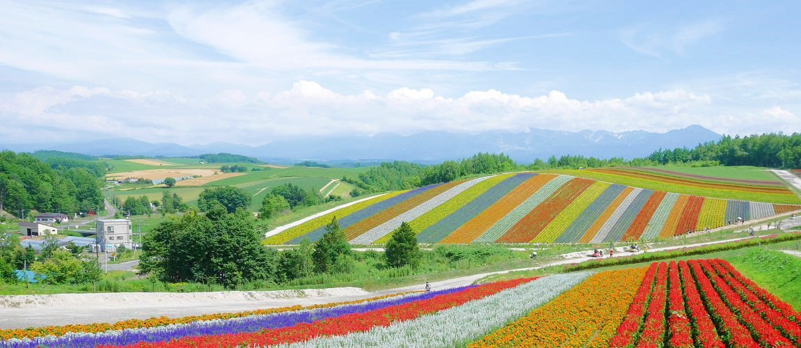 日本自由行|北海道、東北、東京、京阪、岡山、鳥取、瀨戶內海的一個月親子遊