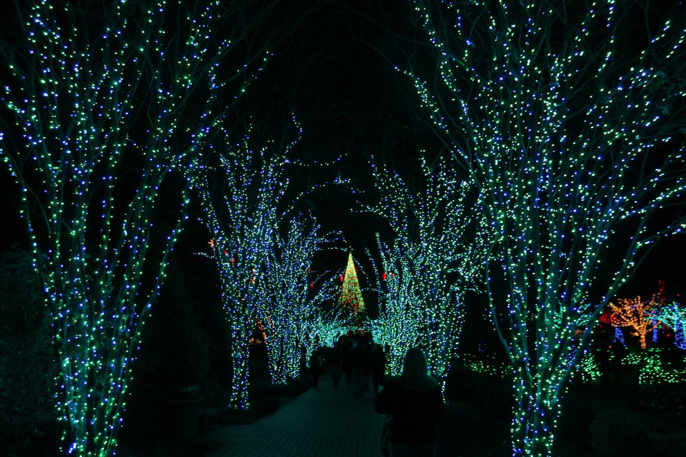A Guide To Atlanta Botanical Garden S Holiday Lights Fellow Farer True