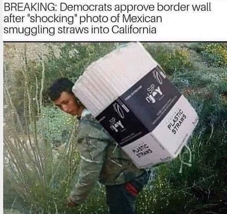 [Image: Democrats-illegal-immigration.jpg?w=451&ssl=1]
