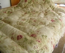 queen size eiderdown.