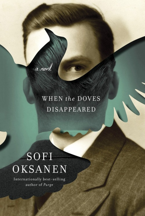 When the Doves Disappeared cover image