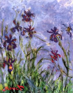 claude-monet-irises-detail