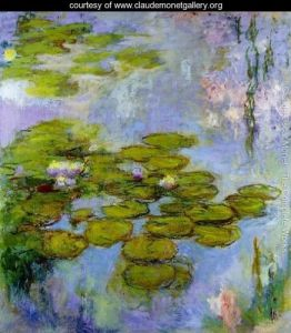 Water-Lilies13