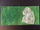 needle book green dragonflies picture