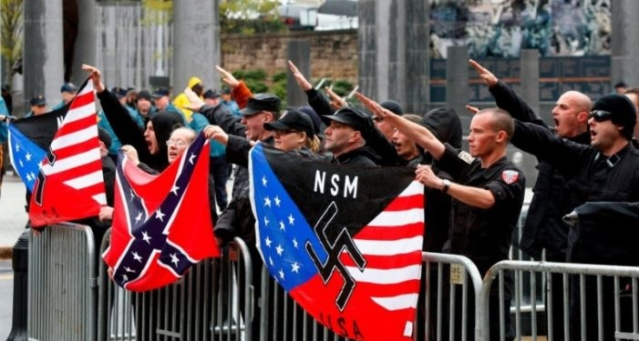 Image result for american nazis