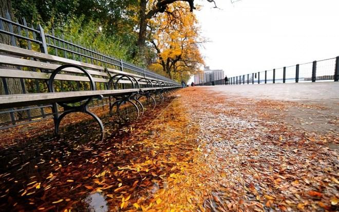autumn-370370_1280