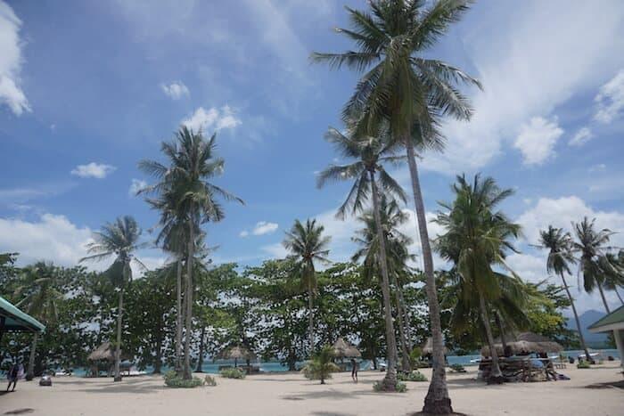 Coral beach Palawan