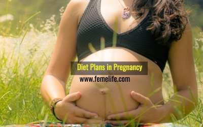 Eating during Pregnancy, Food & Diet Plans