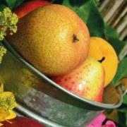 Abnehmen mit der Apfelessig-Diät: Unsere Erfahrungen