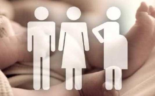 A Critical Analysis Of The Surrogacy Regulation Bill 2016