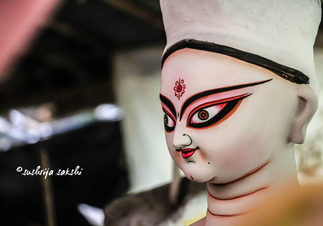 Durga, Gender and Sexuality - A Photo Essay