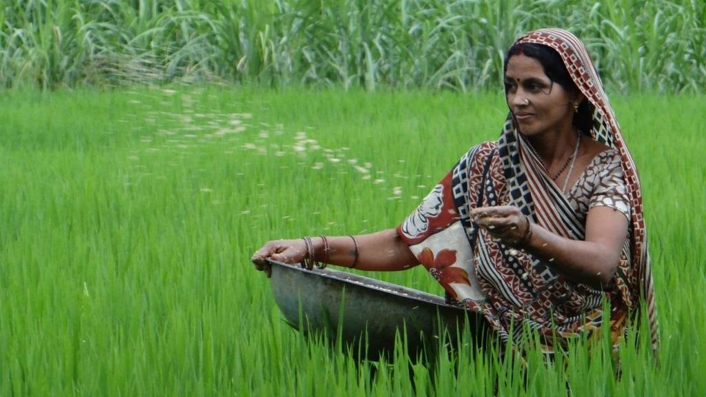 The Forgotten Female Farmers Of India: Narratives From Bihar