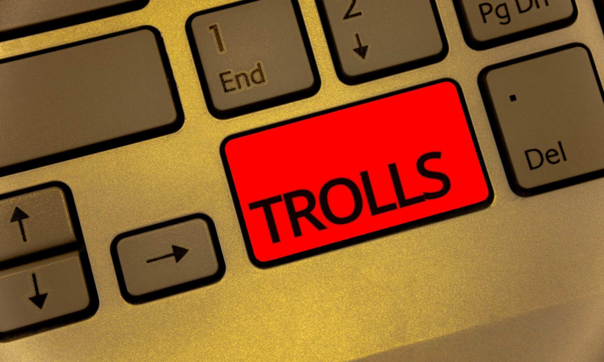 feminist bashing and harassment by trolls