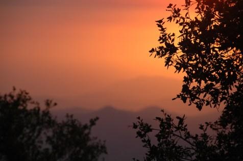 sunset-at-sequioa-2