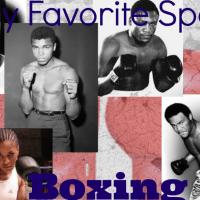 My Favorite Sport - Boxing