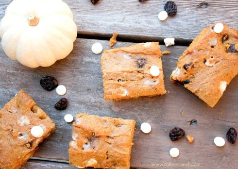 cranberry-white-choc-pumpkin-bars-4--1024x728