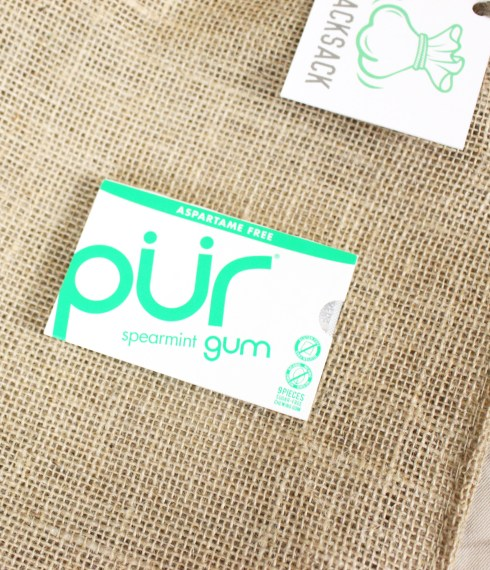 Spearmint Gum Pack by Pur