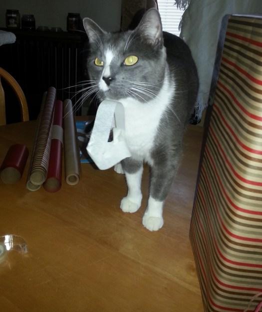 Leroy helping wrap presents.