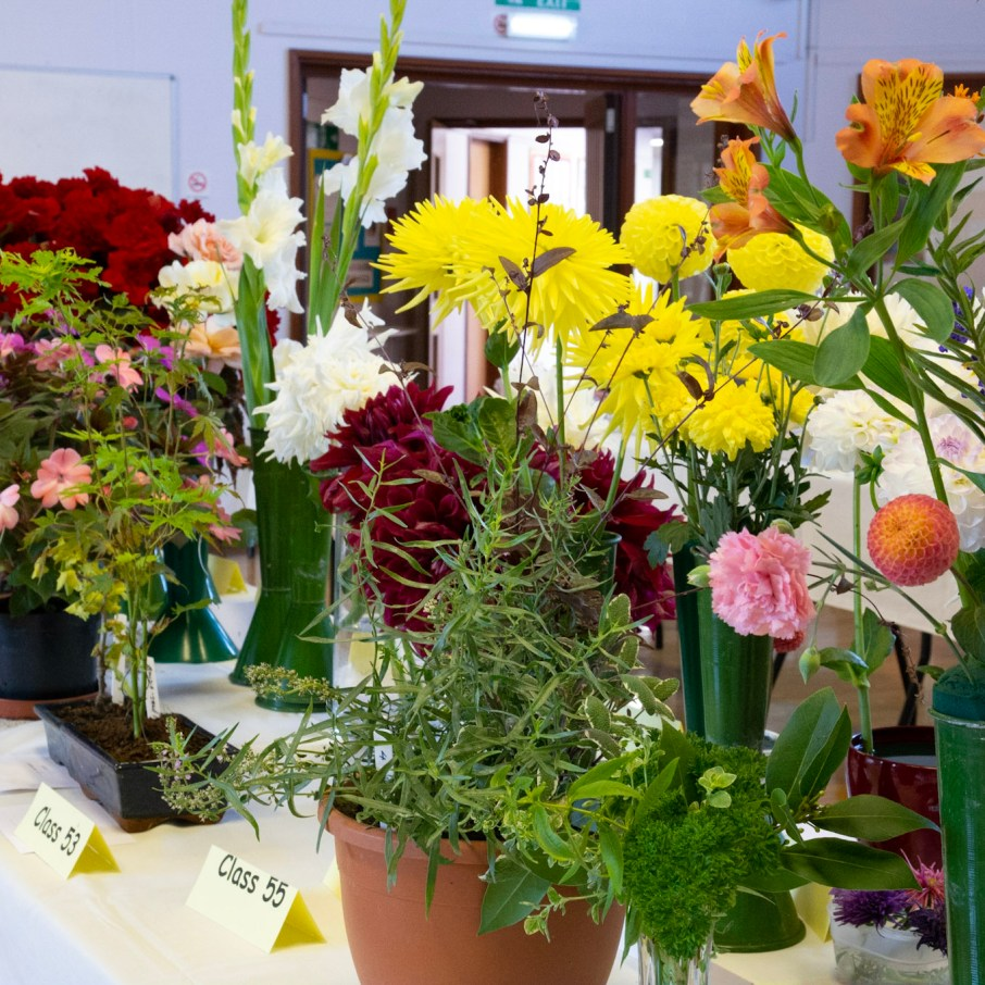 Willingham Horticultural and Craft Show