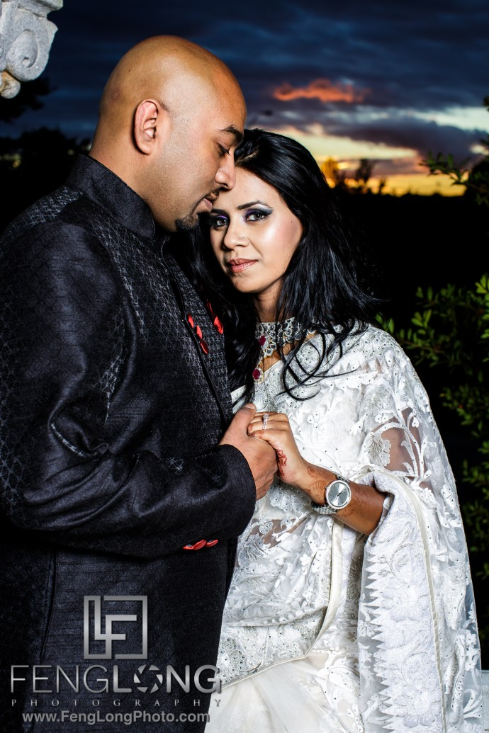 best-atlanta-bengali-indian-engagement-centennial-park-7367