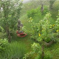 Feng Shui Jardin, l'abondance de pluie lui réussit  si bien!
