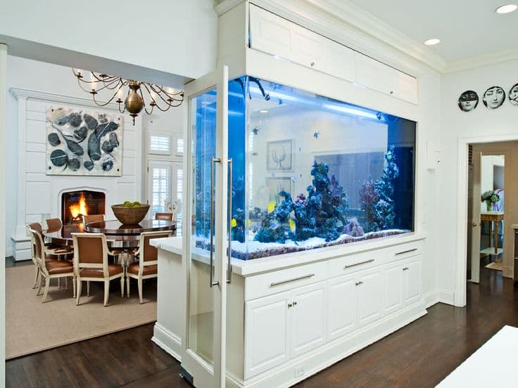 Feng Shui Aquarium Location In Your House And Office