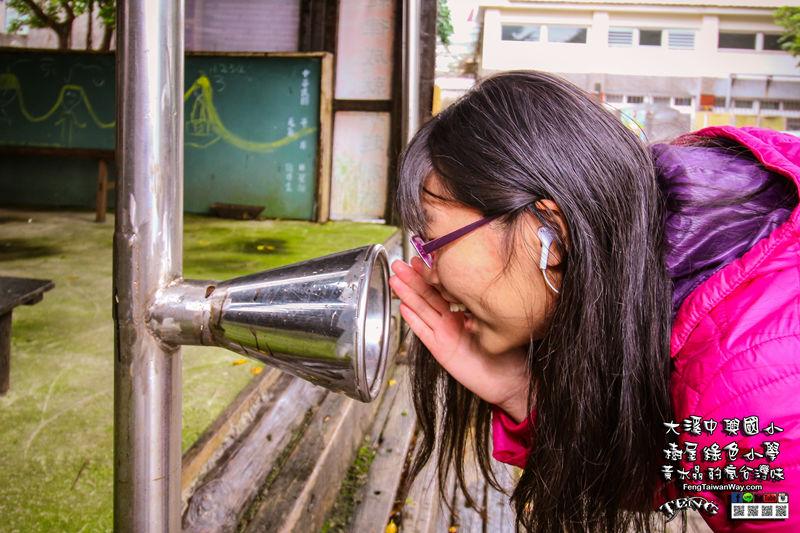 中興國小【特色小學】|桃園大溪親子溜滑梯景點;有樹屋、羊群,重視環境及藝文教育的綠色小學 @黃水晶的瘋台灣味