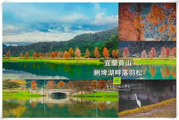 蜊埤湖畔落羽松【宜蘭景點】|員山鄉的寧靜天空之鏡;爆美的網美IG打卡熱點