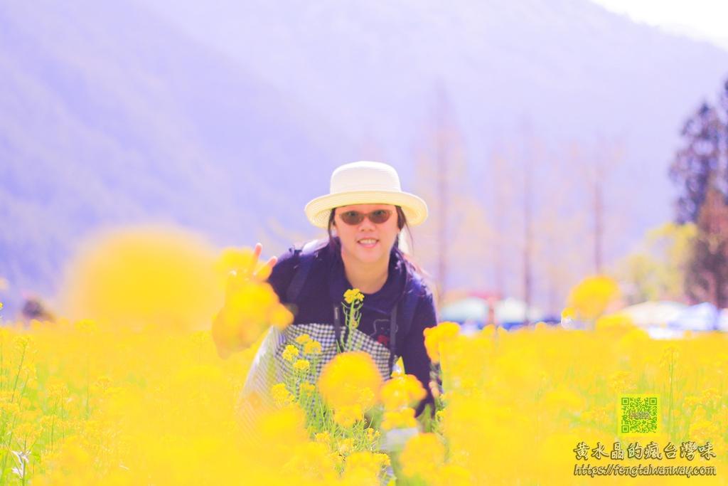 武陵農場回程宜蘭台7甲線起大霧【黃水晶的旅遊日常影片】 @黃水晶的瘋台灣味