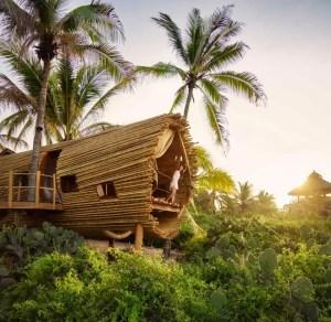 Playa Viva - Fénix Traveler