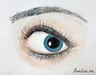 Цветной набросок карандашом женского глаза - Fenlin.ru