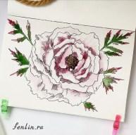 Цветной натюрморт карандашом цветок - Fenlin.ru