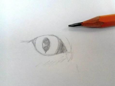 Как нарисовать кота карандашом? Шаг 2. Портреты карандашом - Fenlin.ru