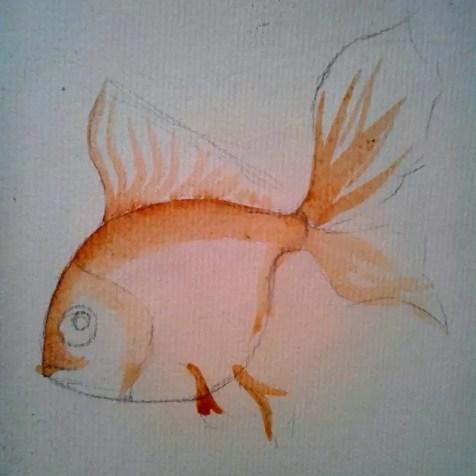 Как нарисовать золотую рыбку? Шаг 2. Портреты карандашом - Fenlin.ru