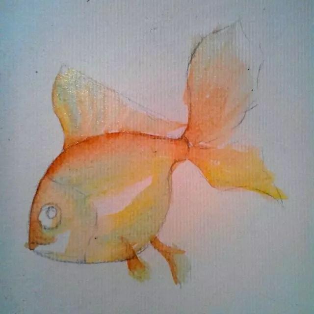 Как нарисовать золотую рыбку? Шаг 4. Портреты карандашом - Fenlin.ru