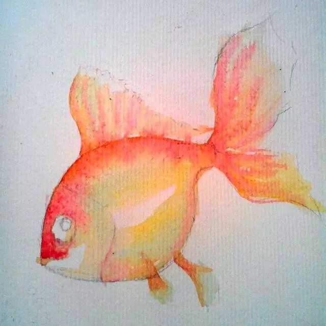 Как нарисовать золотую рыбку? Шаг 5. Портреты карандашом - Fenlin.ru