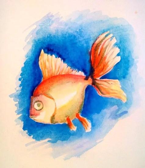 Как нарисовать золотую рыбку? Шаг 9. Портреты карандашом - Fenlin.ru
