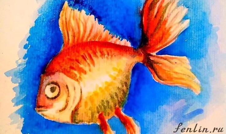 Как нарисовать золотую рыбку? Портреты карандашом - Fenlin.ru