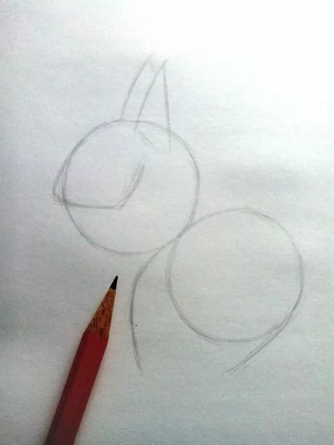 Как нарисовать белку карандашом? Шаг 3. Портреты карандашом - Fenlin.ru