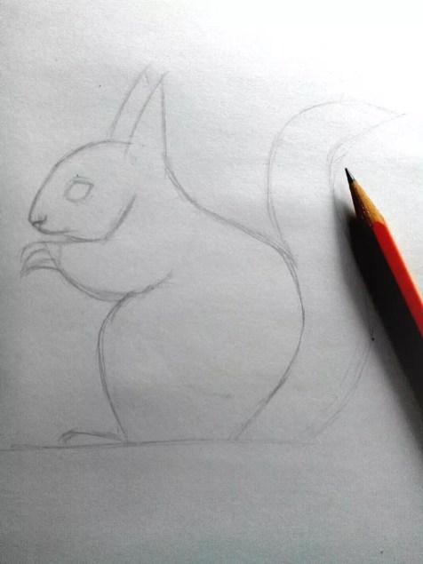 Как нарисовать белку карандашом? Шаг 7. Портреты карандашом - Fenlin.ru