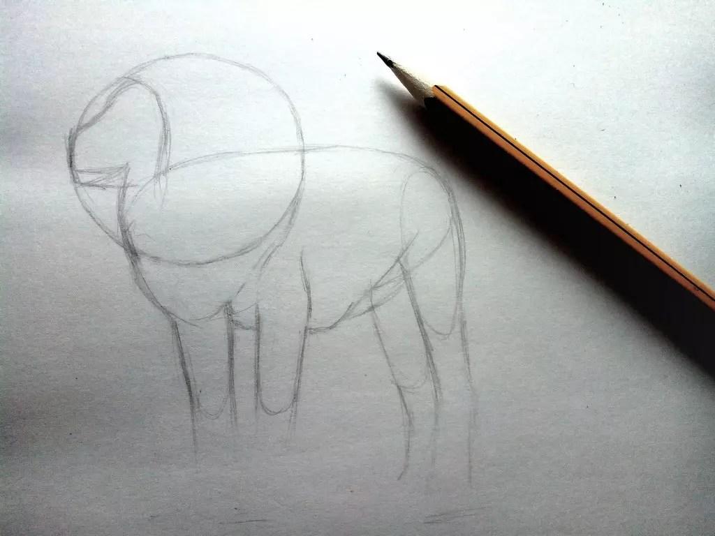 Как нарисовать льва карандашом? Шаг 4. Портреты карандашом - Fenlin.ru