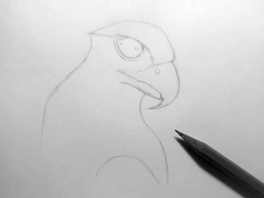 Как нарисовать орла карандашом? Шаг 7. Портреты карандашом - Fenlin.ru