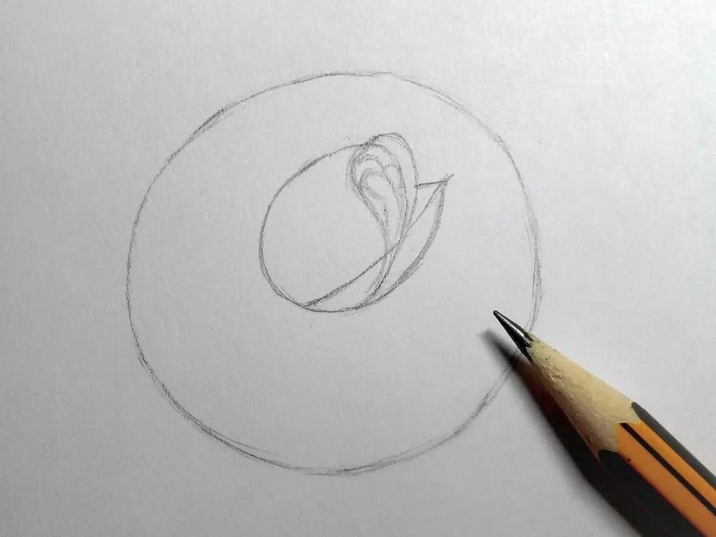 Как нарисовать розу карандашом? Шаг 4. Портреты карандашом - Fenlin.ru